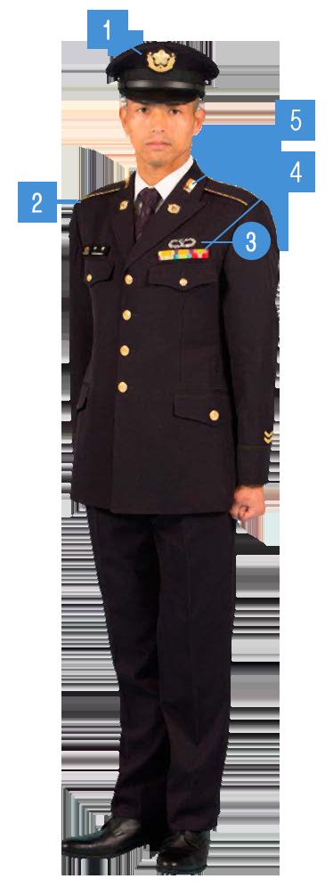自衛隊 章 陸上 階級 自衛隊の「階級」を覚えてみよう!